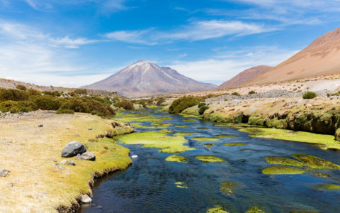 The cost of water regulation in Northern Chile